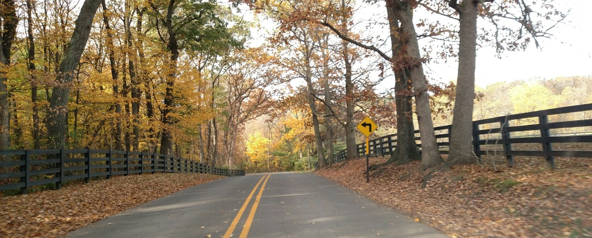 A Journey with Journey: Fall Excursion, Part3